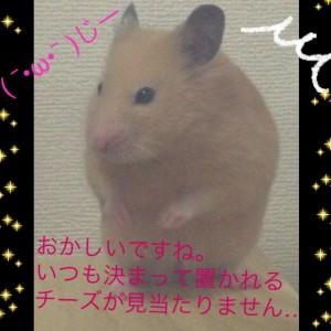 daikichichi-zumiataranai